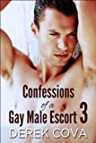 Confessions of a Gay Male Escort 3: Bound in Public