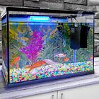 26L Glass Aquarium Fish Tank Starter Kit Set Air Filter Pump Net Stone LED Light
