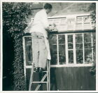 Photograph 1954 Social History Man Repairing His Lean to Conservatory