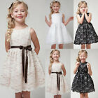 Kids Baby Flower Girl Lace Tulle Party Dress Wedding Bridesmaid Princess Dresses
