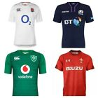 ENGLAND IRELAND WALES SCOTLAND HOME RUGBY SHIRT JERSEY RWC 2019 RRP £80 50% OFF