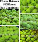 30 Used Tennis Balls. Branded Balls From Major Manufacturers. Balls Games / Dogs