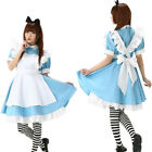 Adults Halloween Costume Week Alice in Wonderland Fancy Dress Up UK Book Party