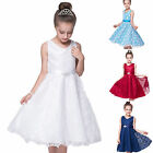 Kids Flower Girl Party Lace Long Dress Wedding Bridesmaid Dresses Age 3-13 Years