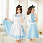 Adult Alice In Wonderland Costume Fancy Lolita Dress Set Book Week Day Apron New