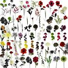 Full Box Artificial Flowers Clearance Multi Listing - Wholesale Silk Fake Bulk