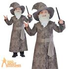 Childs Wise Wizard Costume Boys Fancy Dress Kids World Book Day Harry Outfit