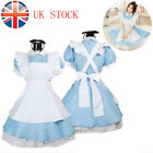 Women Adult Alice In Wonderland Costume Cosplay World Book Day Fancy Dress UK