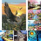 DIY 20x16inch Canvas Digital Oil Painting Kit Paint by Numbers No Frame Decor UK