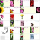 Florist Flower Message Cards Birthday Annivesary Funeral Mothers Day Blank